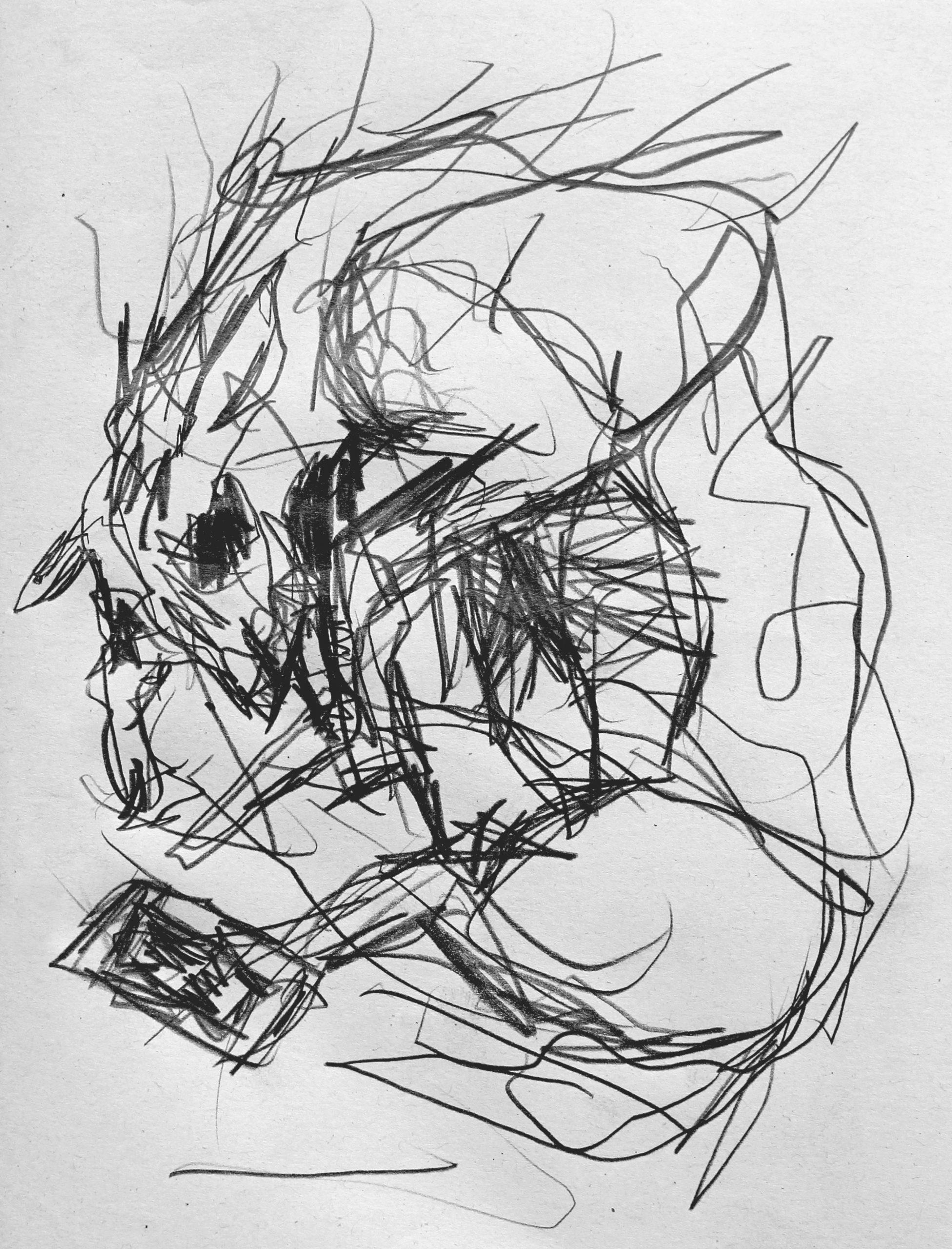 carloszoromono-dibujos-06