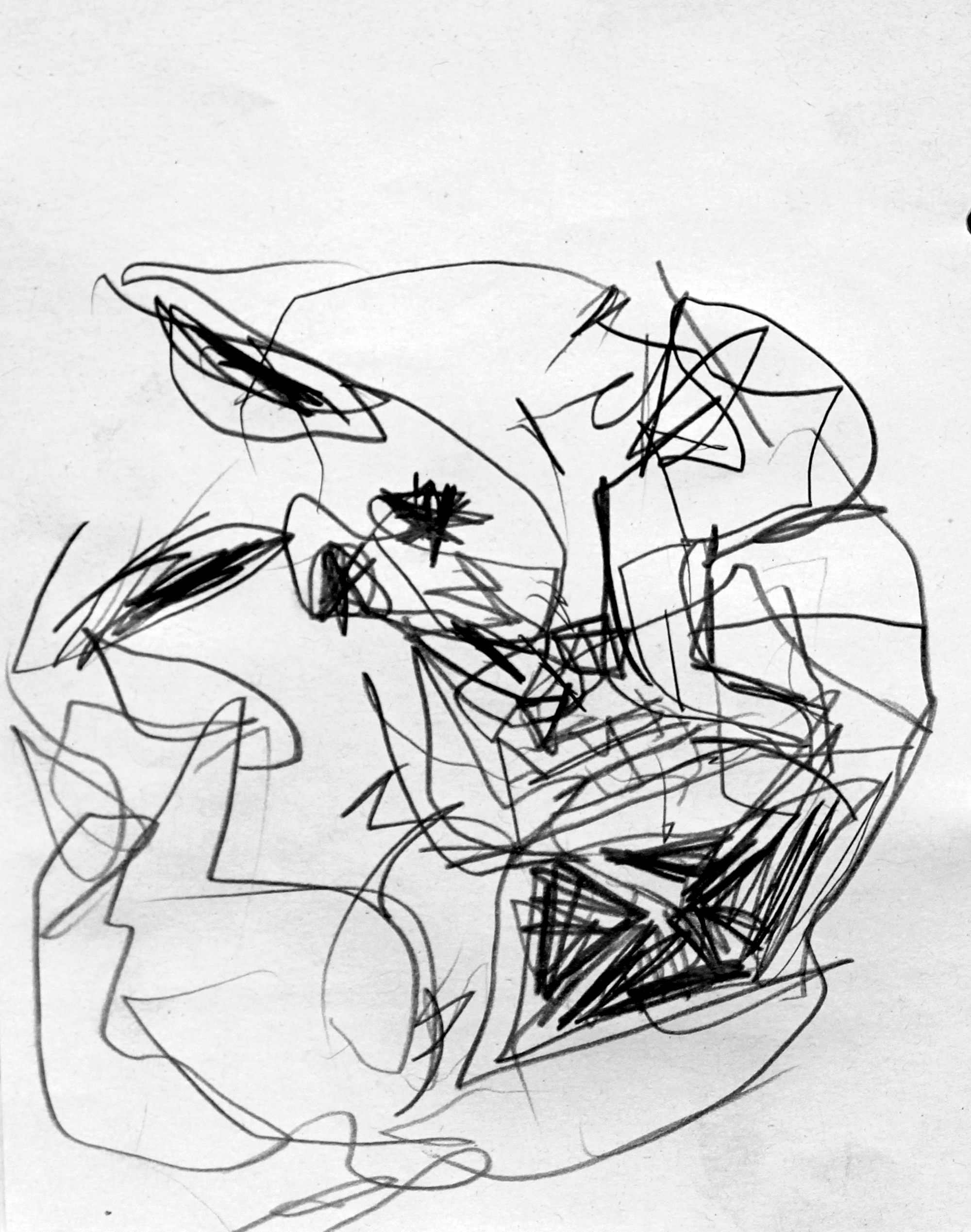 carloszoromono-dibujos-08