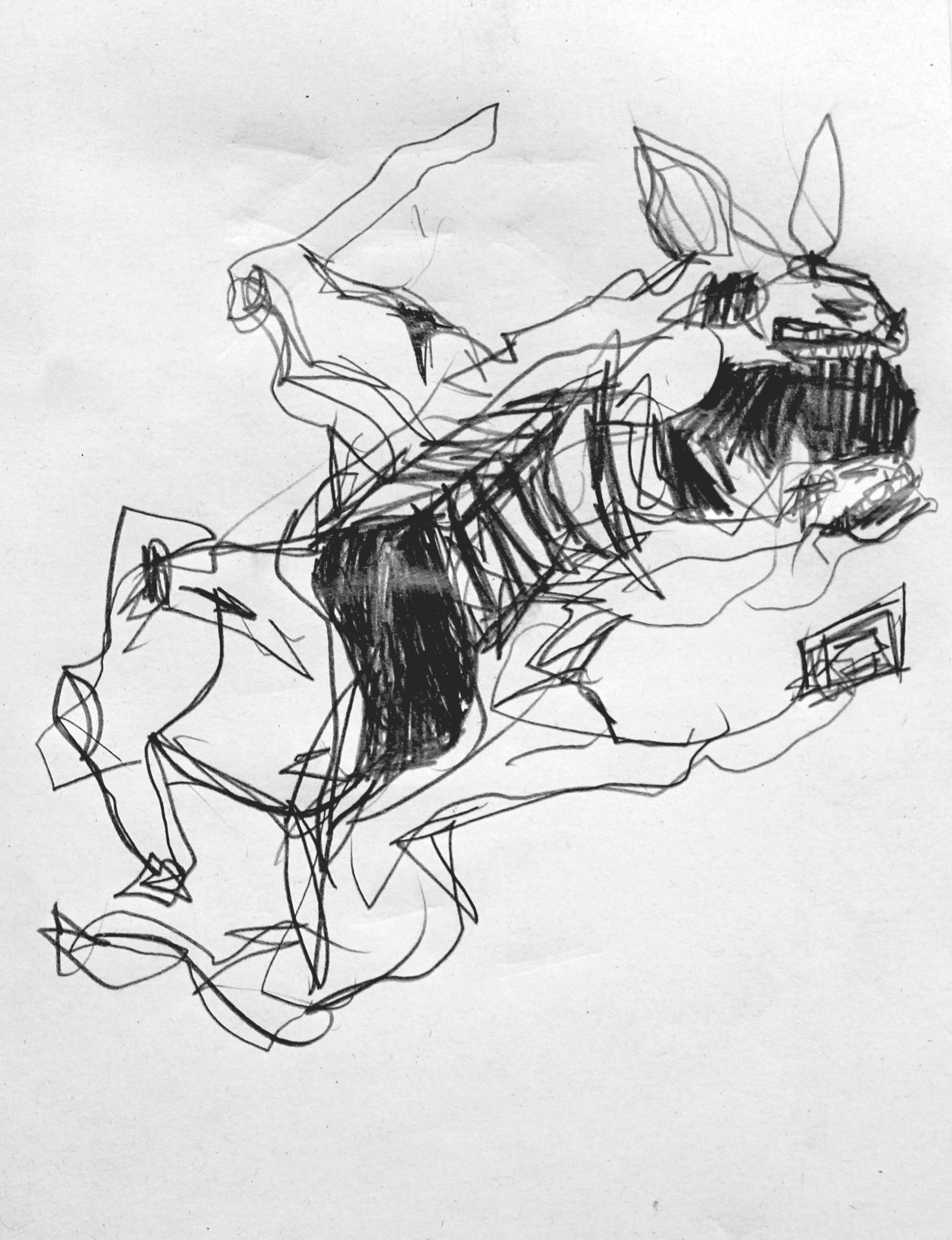 carloszoromono-dibujos-09