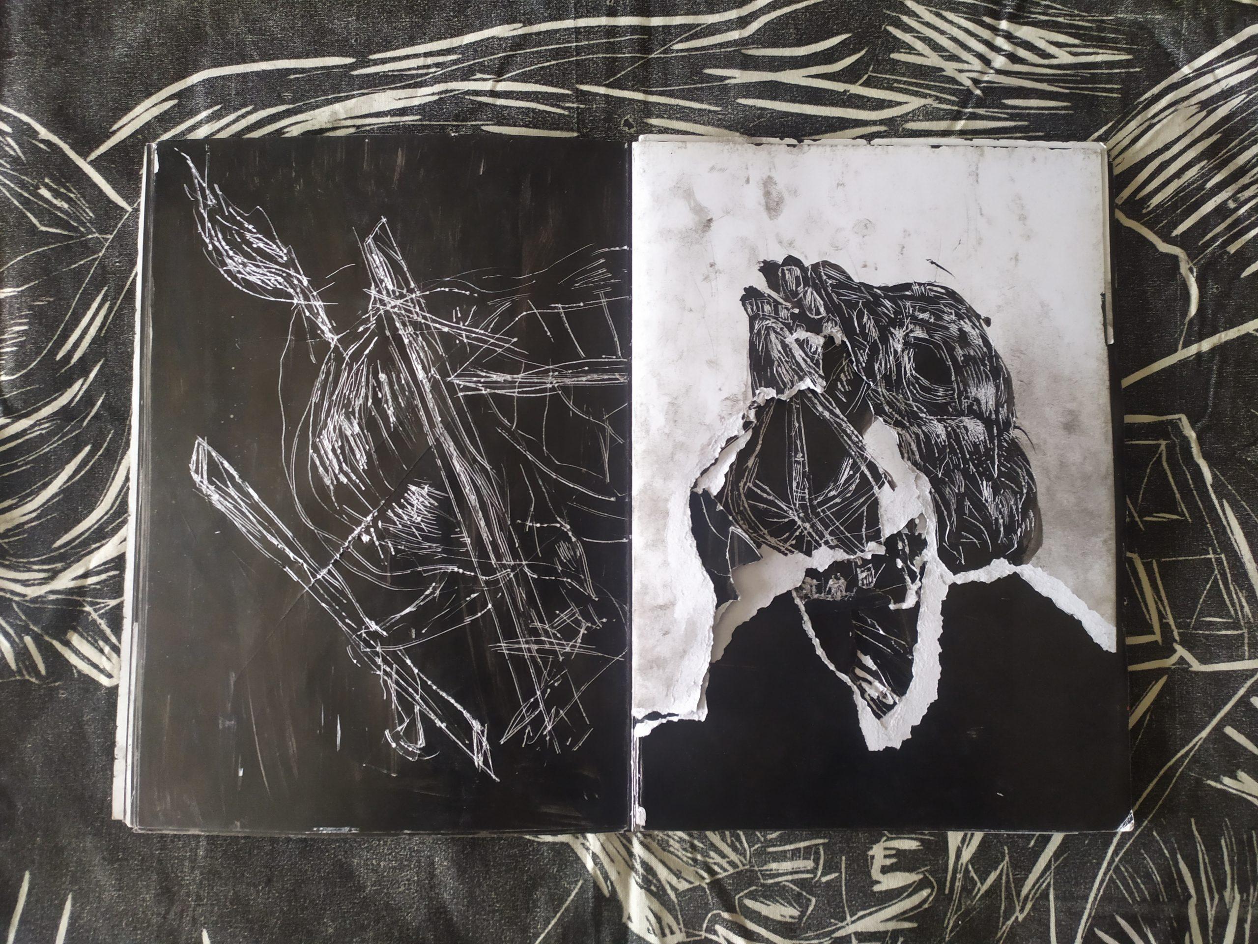 ZORROMONO- la mirada de la rutina artist book (13)