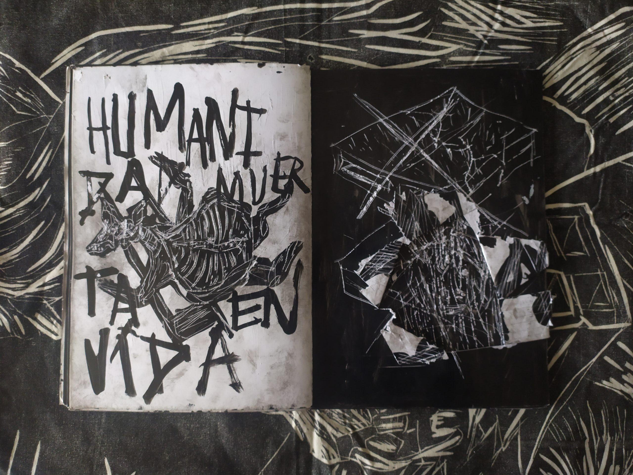 ZORROMONO- la mirada de la rutina artist book (21)