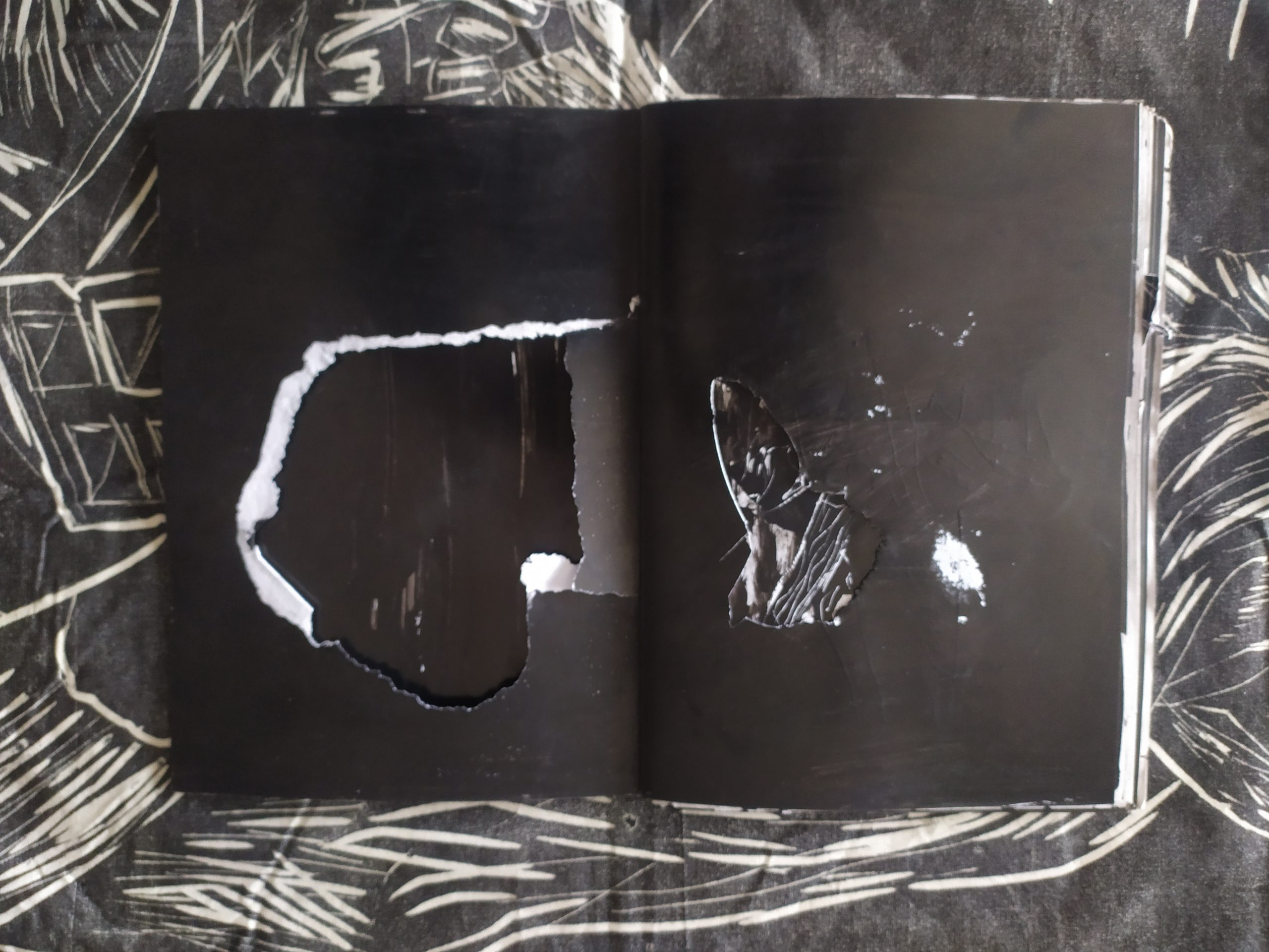 ZORROMONO- la mirada de la rutina artist book (26)