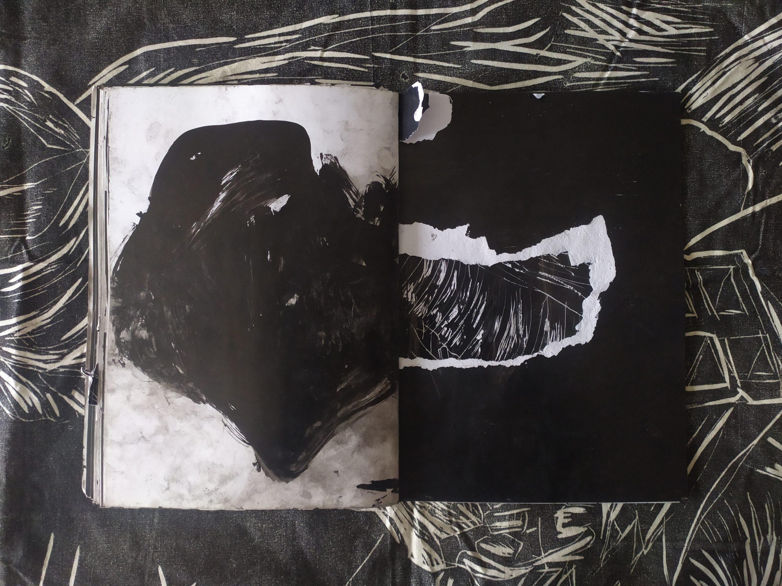ZORROMONO- la mirada de la rutina artist book (28)